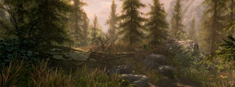 Co-op Mod For Skyrim To Enter Closed Beta Soon