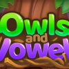 Owls and Vowels Review