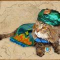 Bethesda & The Cat Adoption Foundation Join Forces For Khajiit Everywhere