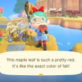 How To Farm Autumn-Flavoured DIYs And Materials In Animal Crossing: New Horizons